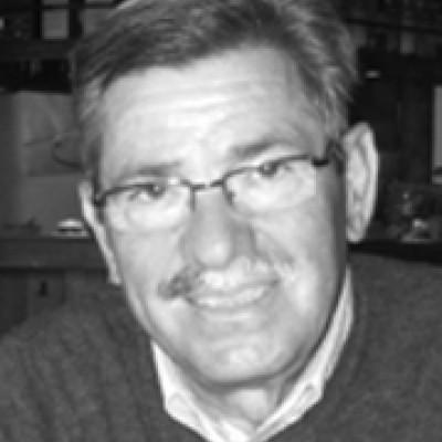 Mario Capraro